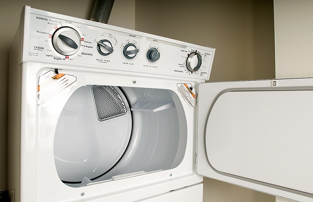 Reuse your dryer lint?  Yes!