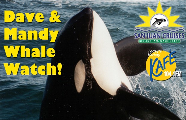 Dave & Mandy's Whale Watch